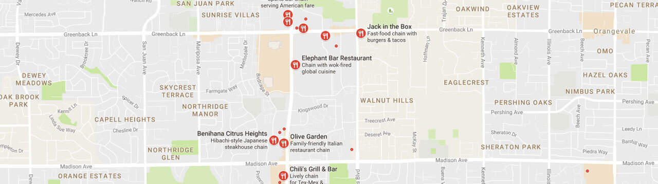 Google Maps Business Search