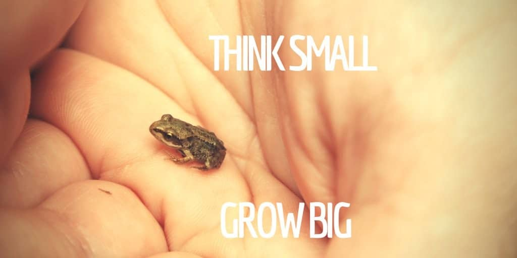 Little frog: think small, grow big.